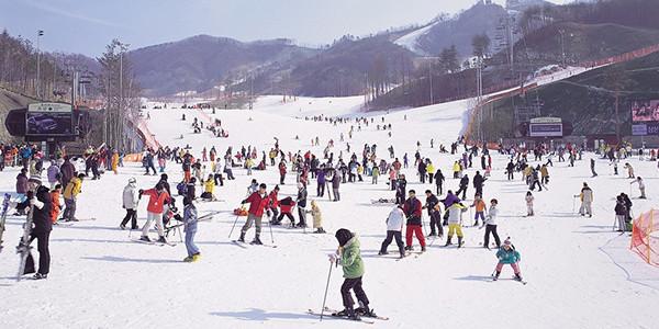 3N5D SPARKLING WINTER KOREA + LIGHTING FESTIVAL